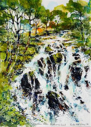 Swallow Falls by Bob Morley