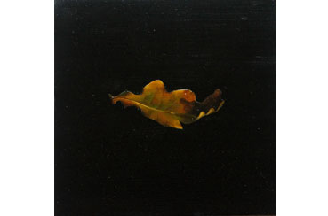 Oak Leaf by Jane Domingos