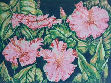 Darling Hibiscus by Mandeep Dhadialla