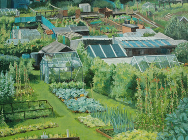 Allotments near Leyburn, Yorkshire by Mary Rodgers