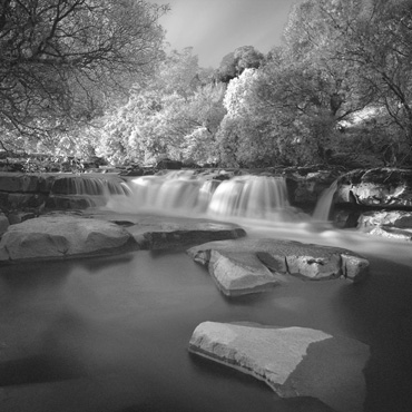 wath Force by Michael Moralee