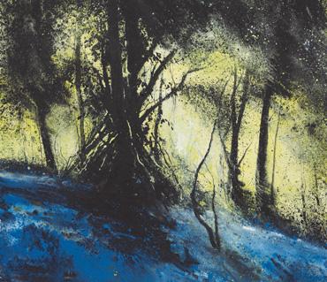 Dusk, Barnsdale Wood by Philip Dawson