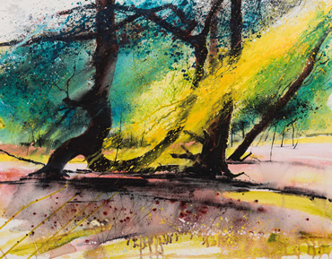 Autumn Sunlight, New Forest by Philip Dawson