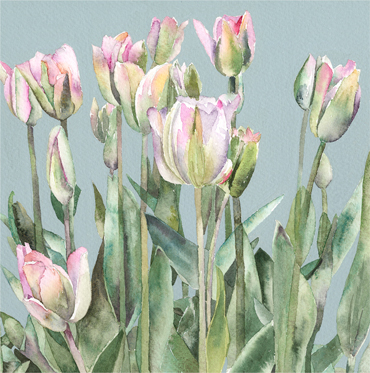 White Tulips by Vivienne Cawson