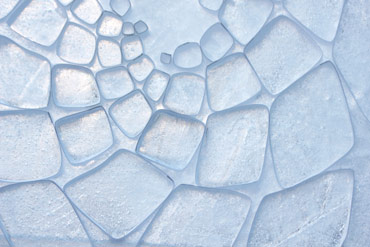 Ice & paper composition by Deborah Bird