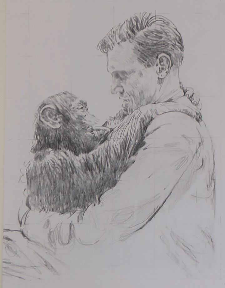 Drawing by Bryan Organ of David Attenborough