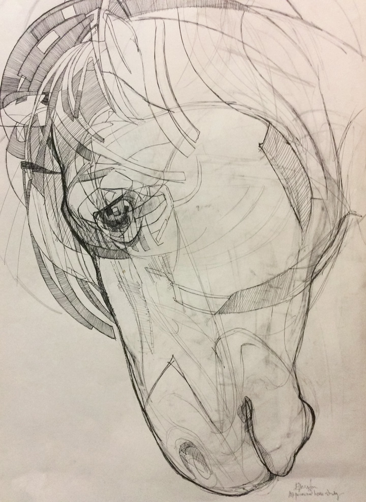 Drawing by Louise Ellerington