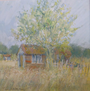 Thumbnail image of Terry Whittaker - Annual Exhibition 2015