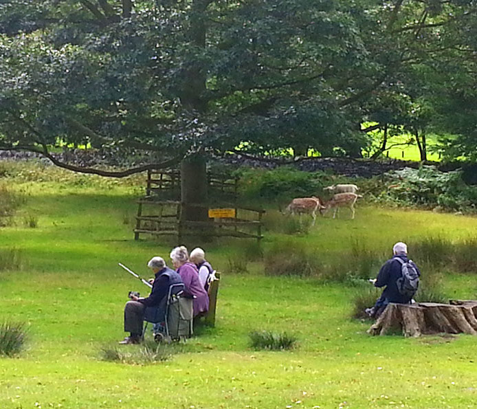 LSC Sketch Day At Bradgate Park