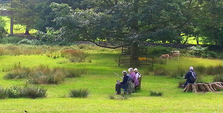 photograph of LSC members sketching at Bradgate Park in August