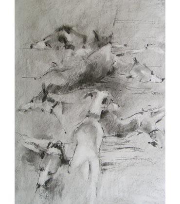 Thumbnail image of Duncan Thomas - Simply Drawing