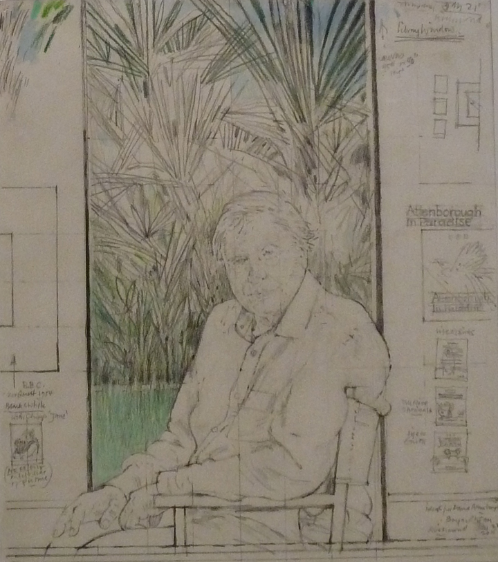 Drawing of David Attenborough by Bryan Organ