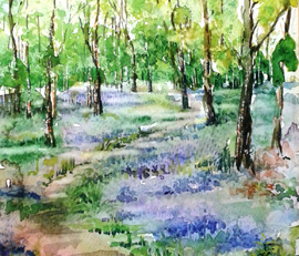 Paint Bluebells In Watercolour With Rita Sadler