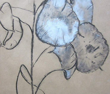 Drawing for Beginners Workshop - Quorn Art Group