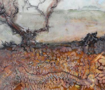 Woodland Wanders - Jo Sheppard
