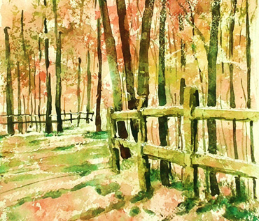'Painting Autumn' Watercolour Workshop - Rita Sadler