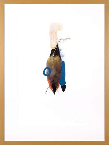 Thumbnail image of Lucy Stevens, 'Waxwing (Blue Lobster)' - A sample of artworks in LSA Annual Exhibition 2019