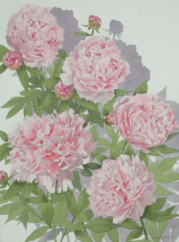 Thumbnail image of Mary Rodgers, 'Pink Peony' - A sample of artworks in LSA Annual Exhibition 2019