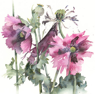Introduction image for Loose & Lively Flowers in Watercolour - Vivienne Cawson