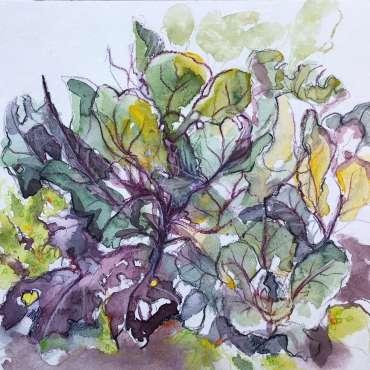 Thumbnail image of 47: Toni Northcott, 'Kim's Cabbages' - LSA Annual Exhibition 2020   Artwork