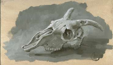 Thumbnail image of Pete Underhill, 'Sheep Skull' - study - Inspired | April