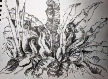 Thumbnail image of Sue Clegg, Garden Study for 'England's Green and Pleasant Lands' - Inspired |  May