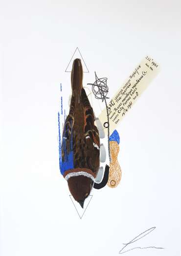 Thumbnail image of Lucy Stevens, 'Tree Sparrow (Cobalt Blue)' - Inspired | June