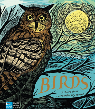 Publications | Birds and their Extraordinary Worlds - illustrated by Angela Harding