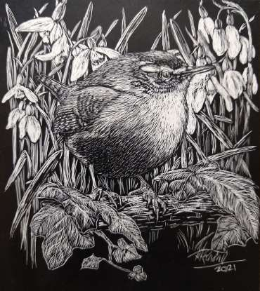Thumbnail image of Ruth Randall,Wren and Snowdrops - Reawakening