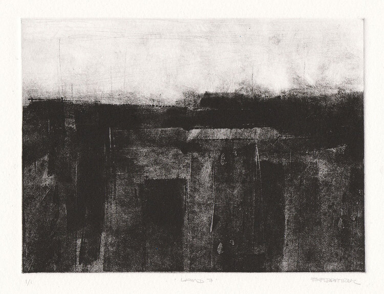 Emma Fitzpatrick, Land No.7