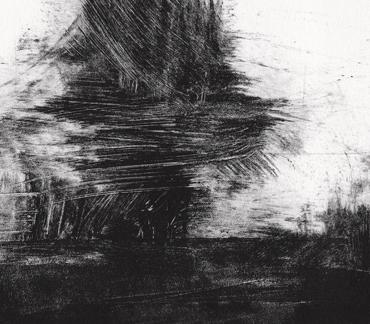Exhibition | Light and Dark