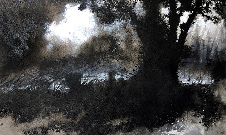 Jo Sheppard, The Field Beyond