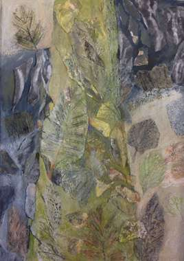 Thumbnail image of Tree, Botanic Garden - Past Member | Ruth Cockayne