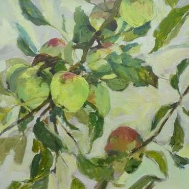 Asturian Apples by Hazel Crabtree