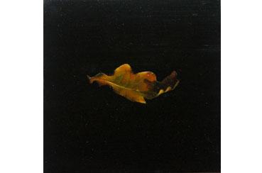 Oak Leaf by Jane Domingos
