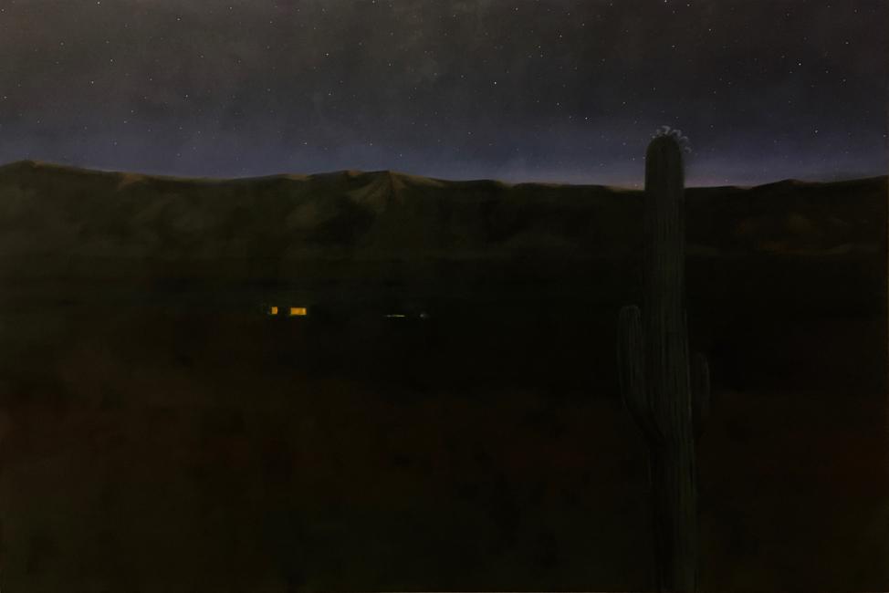 Saguaro Blossom Night by Jane Domingos