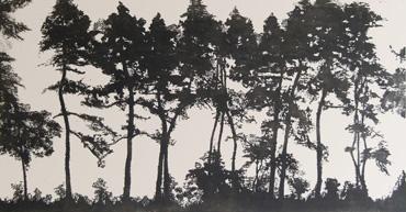 Thumbnail image of Sunlit Pines, Winter Morning by Jo McChesney