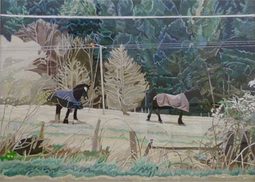 Cold Horses, Snowdonia by John Redfern