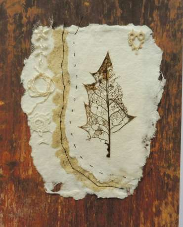 Thumbnail image of Specimen Series (iii) Holly Leaf by Joy Norman