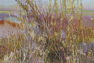 Thumbnail image of Grasses at Pensthorpe by Keith Sturgess