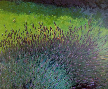 Thumbnail image of Free Range Lavender 2 by Lisa Timmerman