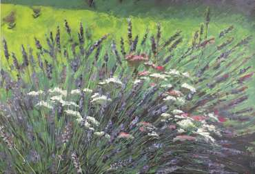Thumbnail image of Free Range Lavender by Lisa Timmerman