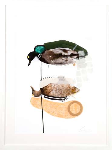 Thumbnail image of The Mallards (Salmon) by Lucy Stevens