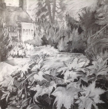 Thumbnail image of Abutilon at Hastings House, Leicester Botanic Gardens by Margaret Chapman