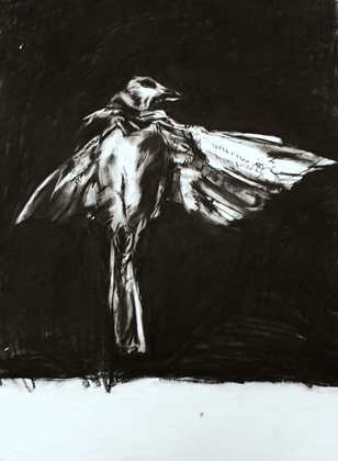 Thumbnail image of Icarus by Maria Collingham