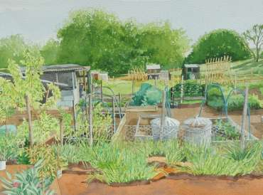 Thumbnail image of Allotment with Bins by Mary Rodgers