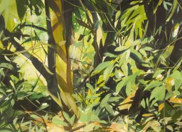 Thumbnail image of Grove at Launde by Peter Clayton