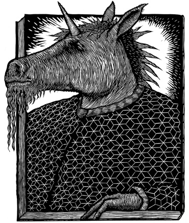 Thumbnail image of The Unicorn by Peter Rapp