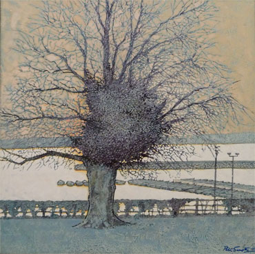 Tree Form by Peter Sumpter