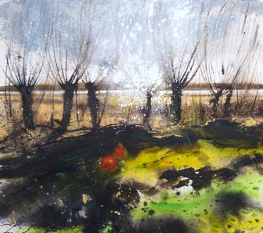 Thumbnail image of Pollarded willows and reed beds, Rutland Water by Philip Dawson